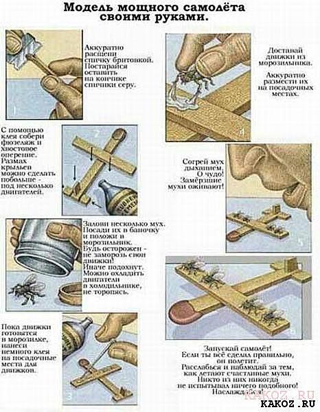 Мухосамолет — инструкция изготовления