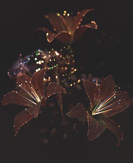 Светодиодные цветы (Япония)