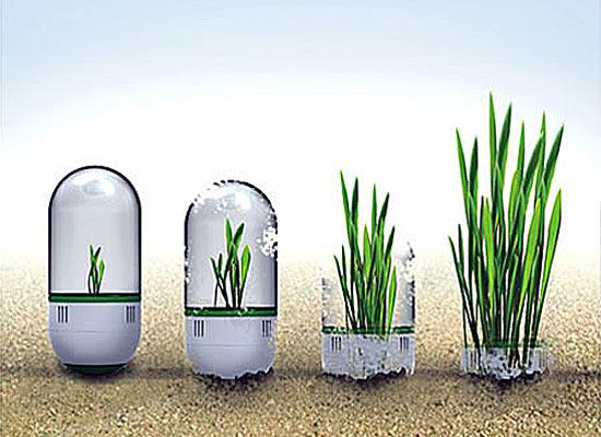 Футуристический проект озеленения планеты SeedBomb