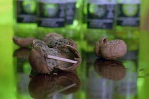 Медитация на гнилом орехе