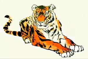 Уссурийский тигр. Александр Журавлев