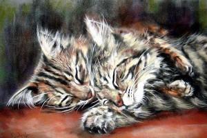 Котята. Paul Knight. Пастель