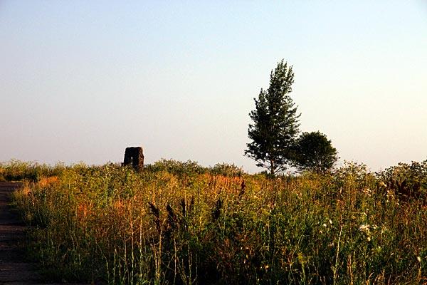Портал. Особые приметы просты: рядом большое дерево, маленькое дерево.