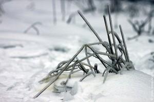 Иероглиф зимы: цветной снимок.