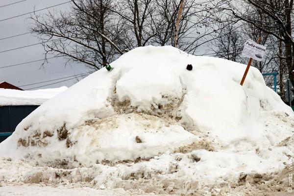 Снежная рыба-капля в Москве чувствует себя невесело. Но это обычное состояние этой грустной рыбы.
