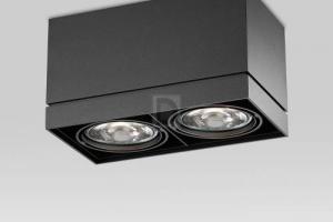 Двойной потолочный светильник из серии Grid on.