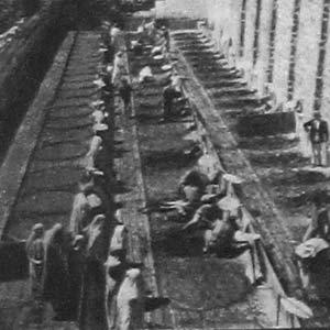 Грязевые ванны. Кисловодск, 1925 год.