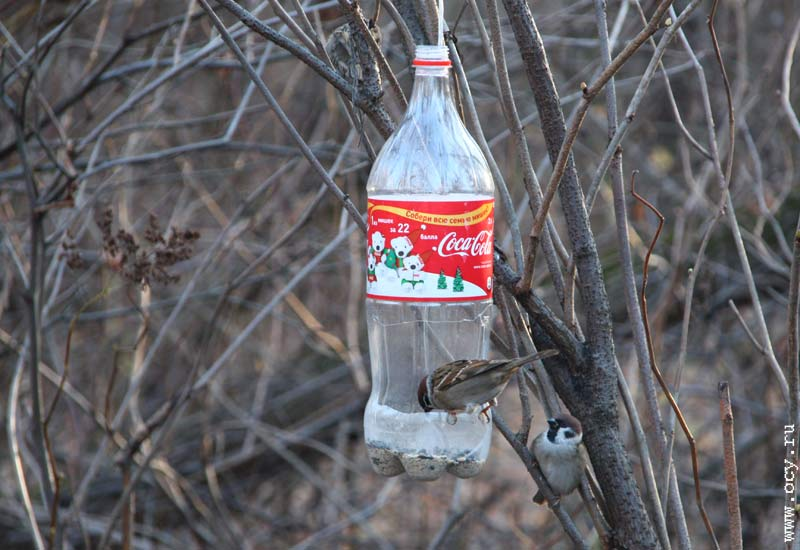 Фото кормушки для птиц из пластиковых бутылок своими руками 36