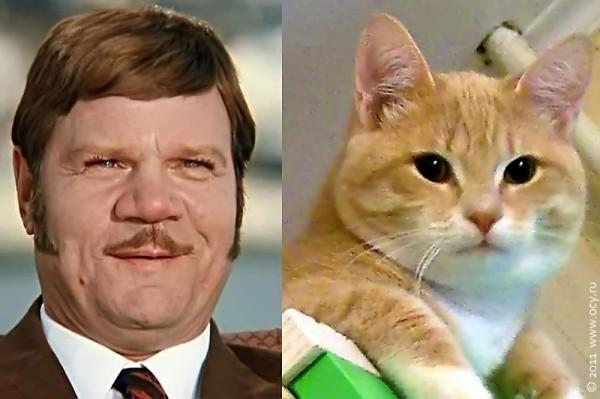 Артист Пуговкин и кот Мишка. Вообще не похожи.