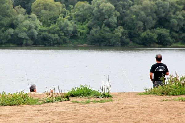 Рыбалка в Пущине на Оке.