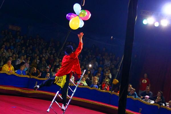 Цирк Арена. Клоун.