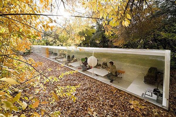 Лесной офис испанской архитектурной компании
