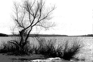 Поздняя осень в Конаково, 1998 год