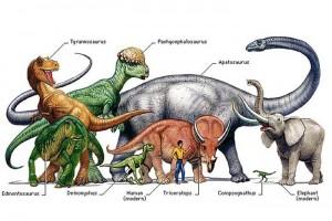 А не сохранились ли где-либо на Земле самые настоящие динозавры?