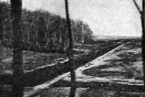 Вид местности после рытья осушительных каналов. 1927 год.