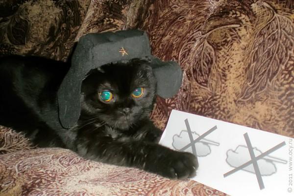 Кот Эльфик ведёт подсчёт убитых Маусов.