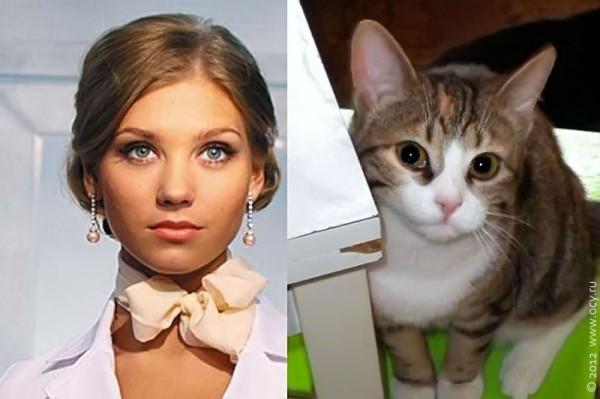 Кошка Жучка, ничуть не похожая на доктора Варю. И наоборот.
