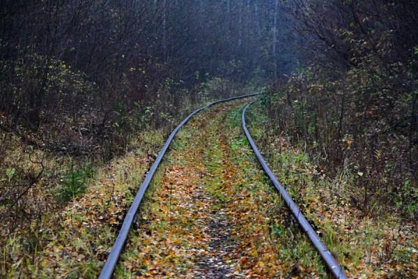 Железнодорожный путь.